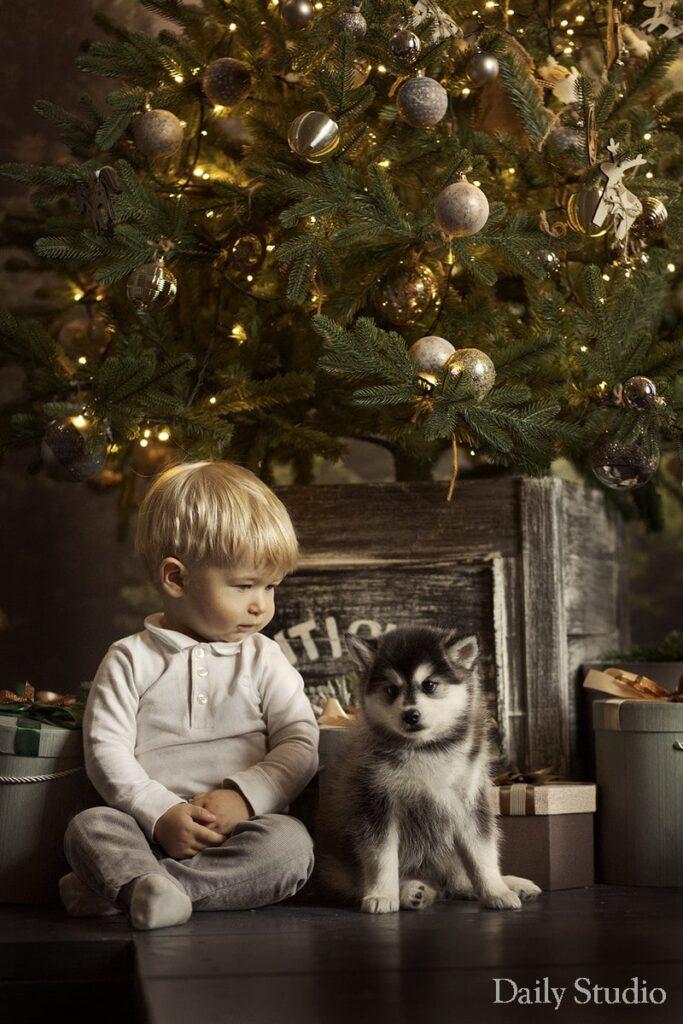 детская фотосессия, детская новогодняя фотосессия, фотосессия с хаски в спб